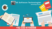 Affordable Web Development | SE Software Technologies